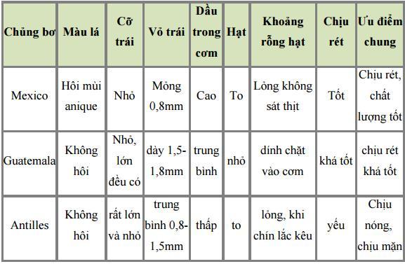 phan-loai-bo-nhap-ngoai